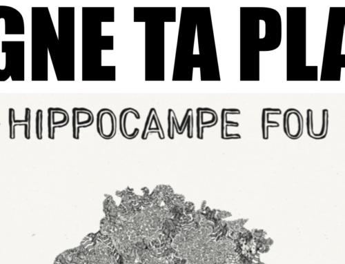 JEU-CONCOURS – GAGNE TA PLACE pour le concert d'HIPPOCAMPE FOU le 30/11/2018 à Paris
